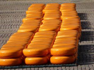 alkmaar kaasmarkt toeristen