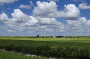 Westfriese Omringdijk Winkel